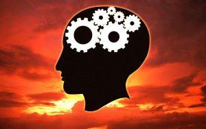 פוסט איך תיצור מוח של מיליונר